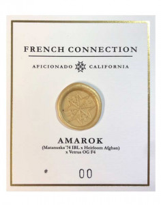 Aficonado French Connection Amarok seeds