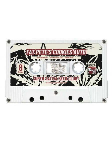 Fat Pete´s Cookies Auto seeds